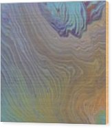 Sunset Wood Wood Print