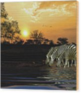 Sunset Zebras At The Watering Hole Wood Print