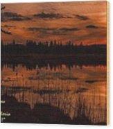 Sunsettia Gloria Catus 1 No. 1 L A. Wood Print