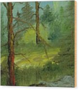 Sunshine Amidst The Trees By The Stream Wood Print