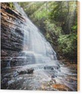 Sunshine At The Waterfall Wood Print