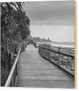 Sunshine Coast Boardwalk  Wood Print