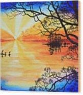 Sunshine On My Shoulders Wood Print