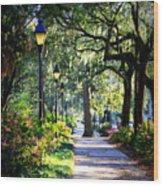 Sunshine On Savannah Sidewalk Wood Print