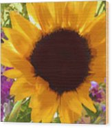 Sunshine Sunflower In The Garden Wood Print