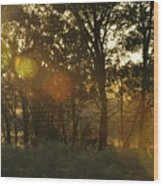 Sunspots Wood Print