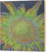Sunverve Wood Print