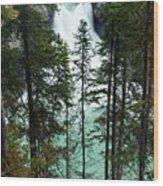 Sunwapta Canyon Wood Print
