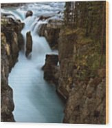 Sunwapta Falls In Jasper National Park Wood Print