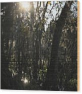 Sunwood Wood Print