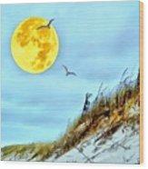 Super Moon 09-27-15 Wood Print