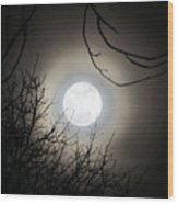 Super Moon  Wood Print