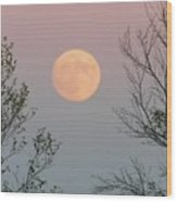 Super Moon At Twilight Wood Print