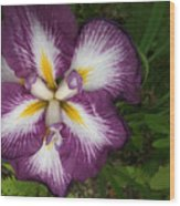 Super-sized Iris Wood Print