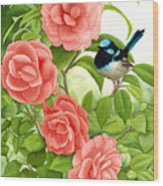 Superb Wren And Camellia Wood Print