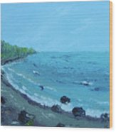 Superior Coast 1 Wood Print