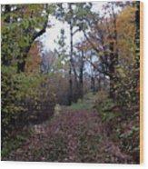 Superior Hiking Trail Wood Print