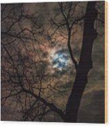 Supermoon W Tree 12-13-16 Wood Print