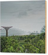 Supertrees At Gardens By The Bay Wood Print