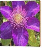 Supreme Violet Wood Print