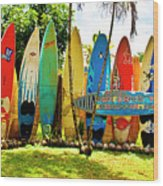 Surfboard Fence II-the Amazing Race Wood Print