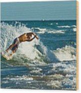 Surfboarding In Florida Wood Print