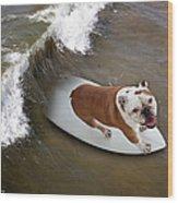 Surfer Dog Wood Print