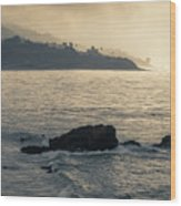 Leo Carrillo Beach Wood Print