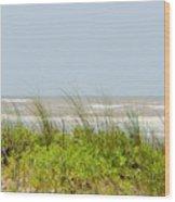 Surfside Dunes Wood Print
