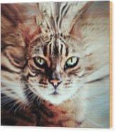 Surreal Cat Wood Print