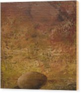 Surreal Egg On An Abstract Canvas Wood Print