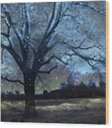 Surreal Fantasy Fairytale Blue Starry Trees Landscape - Fantasy Nature Trees Starlit Night Wall Art Wood Print