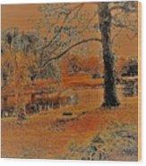 Surreal Langan Park 2 - Mobile Alabama Wood Print