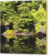Surreal Springs Reflection Wood Print