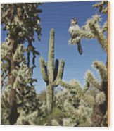 Surrounded Saguaro Cactus Wren Wood Print