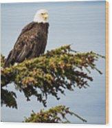 Surveying The Treeline Wood Print
