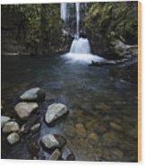 Susan Creek Falls Oregon 1 Wood Print