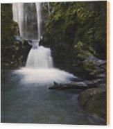 Susan Creek Falls Oregon 2 Wood Print