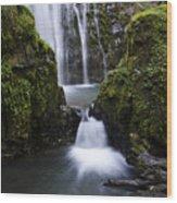 Susan Creek Falls Oregon 4 Wood Print