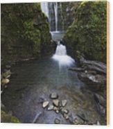 Susan Creek Falls Oregon 5 Wood Print