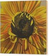 Susanna's Sunflower Wood Print