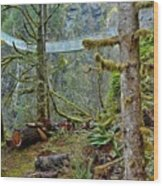 Suspended In The Rain Forest Wood Print