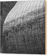 Suspended Wave Wood Print