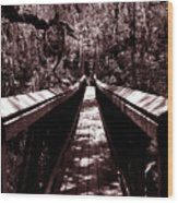 Suspension Bridge Wood Print
