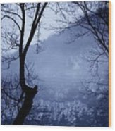 Susquehanna Dreamin... Wood Print
