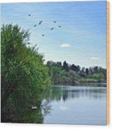 Susquehanna Serenty Wood Print