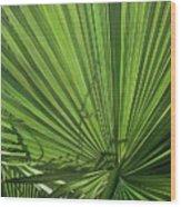 Susurros De Luz Wood Print