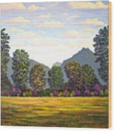 Sutter Buttes In Springtime Wood Print