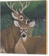 Suwannee River Afternoon Wood Print