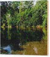Suwannee River Wood Print